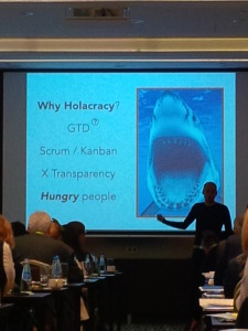 Why Holacracy?